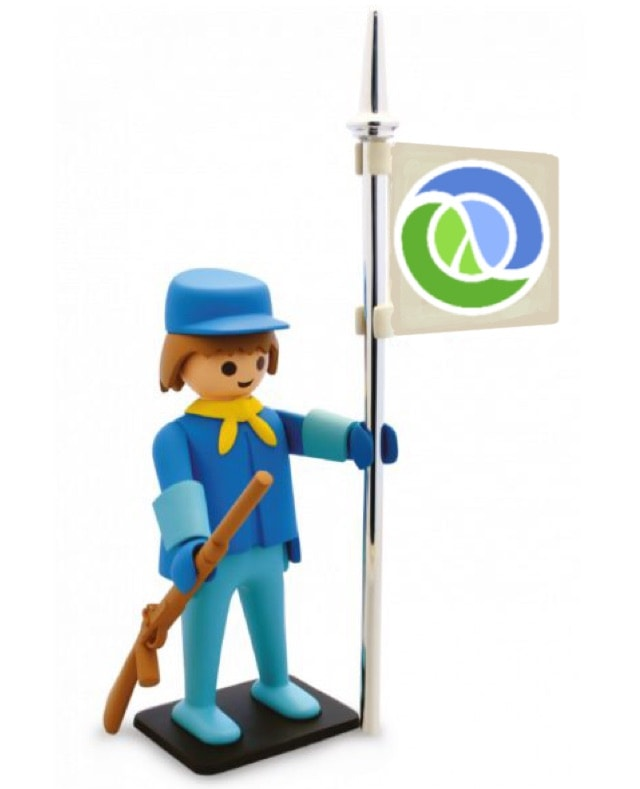 Software and Playmobil